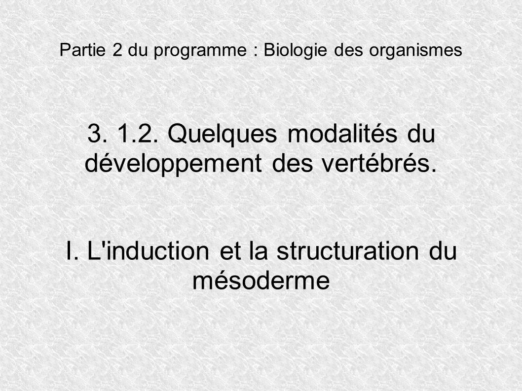 Partie 2 du programme : Biologie des organismes 3. 1.2. Quelques modalités du développement des vertébrés. I. L'induction et la structuration du mésod