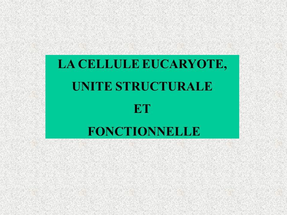 LA CELLULE EUCARYOTE, UNITE STRUCTURALE ET FONCTIONNELLE