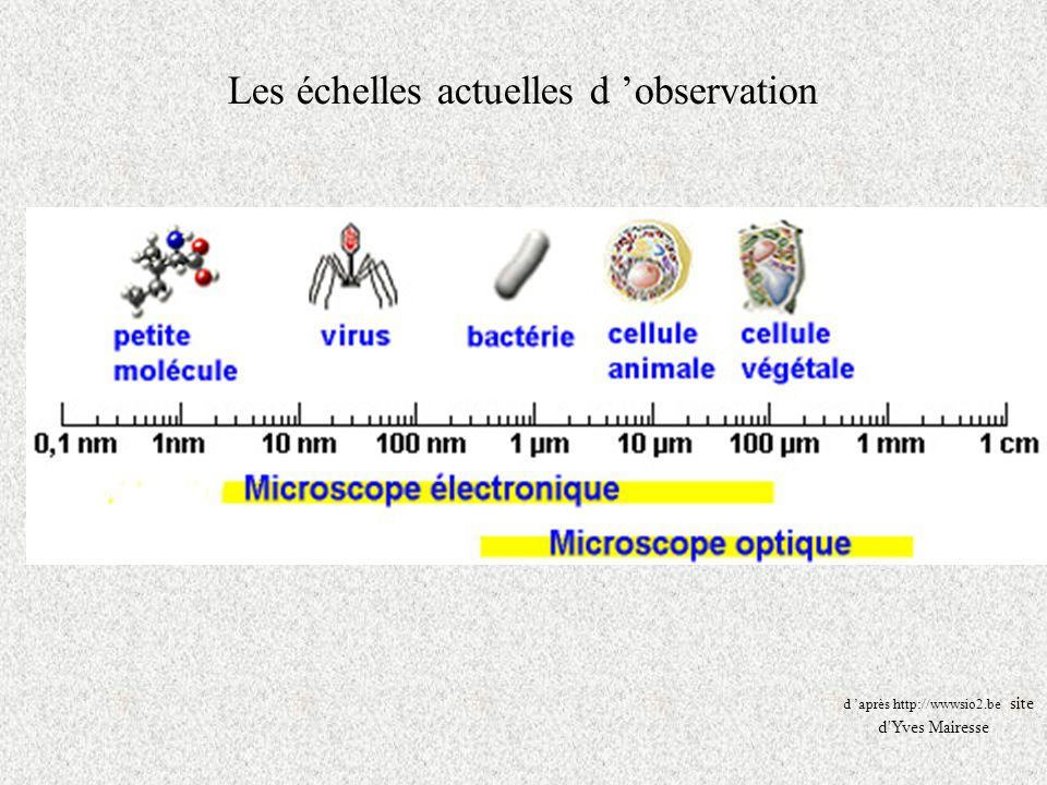 Les échelles actuelles d observation d après http://wwwsio2.be site d'Yves Mairesse