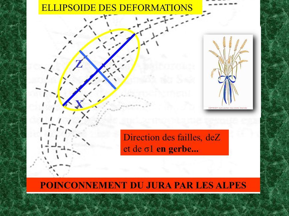 ZXZX ELLIPSOIDE DES DEFORMATIONS Direction des failles, deZ et de σ1 en gerbe... POINCONNEMENT DU JURA PAR LES ALPES