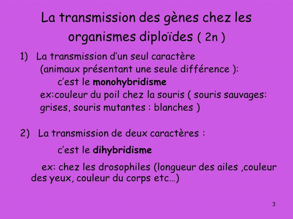 3 La transmission des gènes chez les organismes diploïdes ( 2n ) 1) La transmission dun seul caractère (animaux présentant une seule différence ): ces