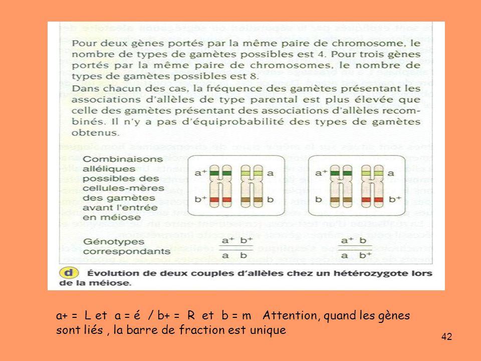 42 a+ = L et a = é / b+ = R et b = m Attention, quand les gènes sont liés, la barre de fraction est unique