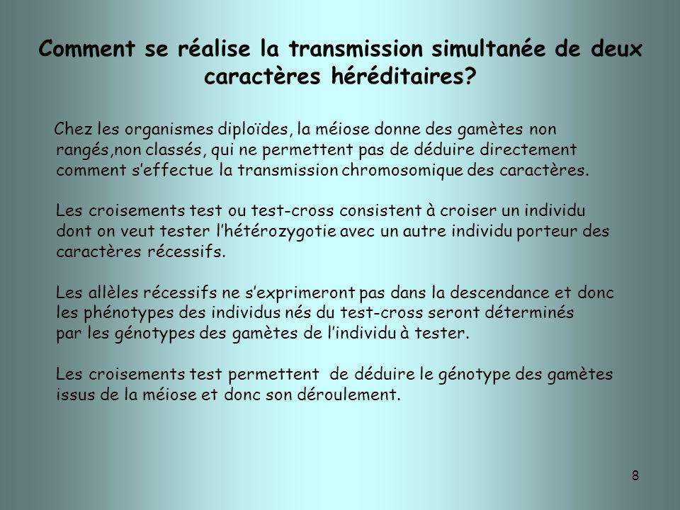 8 Comment se réalise la transmission simultanée de deux caractères héréditaires? Chez les organismes diploïdes, la méiose donne des gamètes non rangés