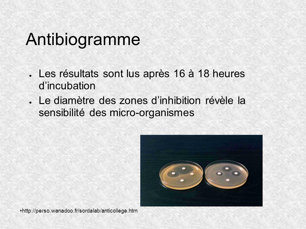 Antibiogramme Les résultats sont lus après 16 à 18 heures dincubation Le diamètre des zones dinhibition révèle la sensibilité des micro-organismes htt