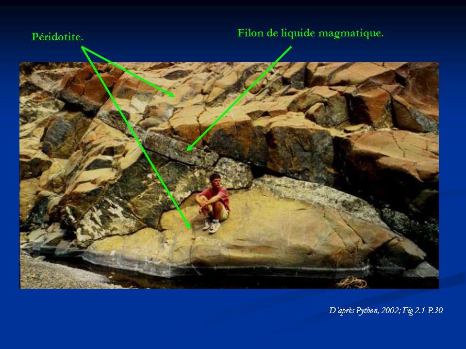 Daprès Python, 2002; Fig 2.1 P.30 Péridotite. Filon de liquide magmatique.