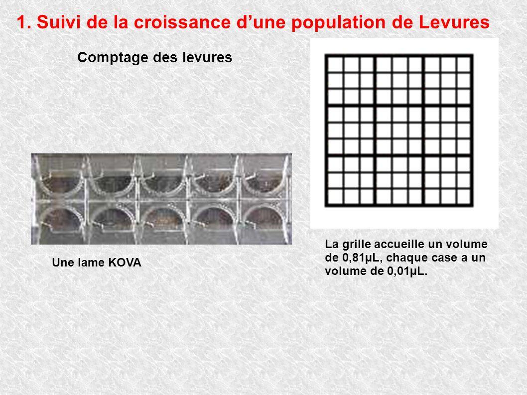Comptage des levures Une lame KOVA La grille accueille un volume de 0,81µL, chaque case a un volume de 0,01µL. 1. Suivi de la croissance dune populati