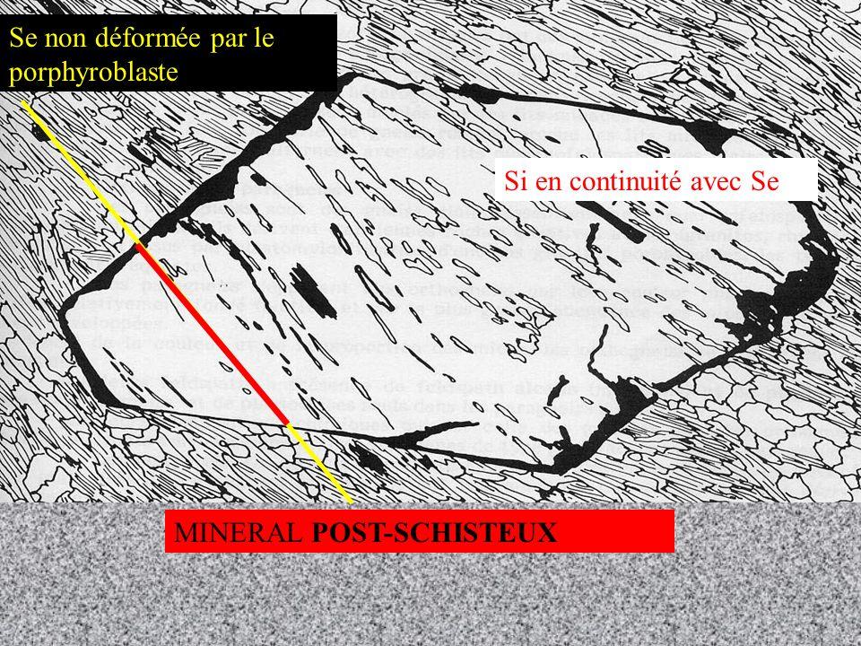 MIGMATITE PALEOSOME NEOSOME Mélanosome Leucosome ANATEXIE = fusion partielle de la croûte continentale