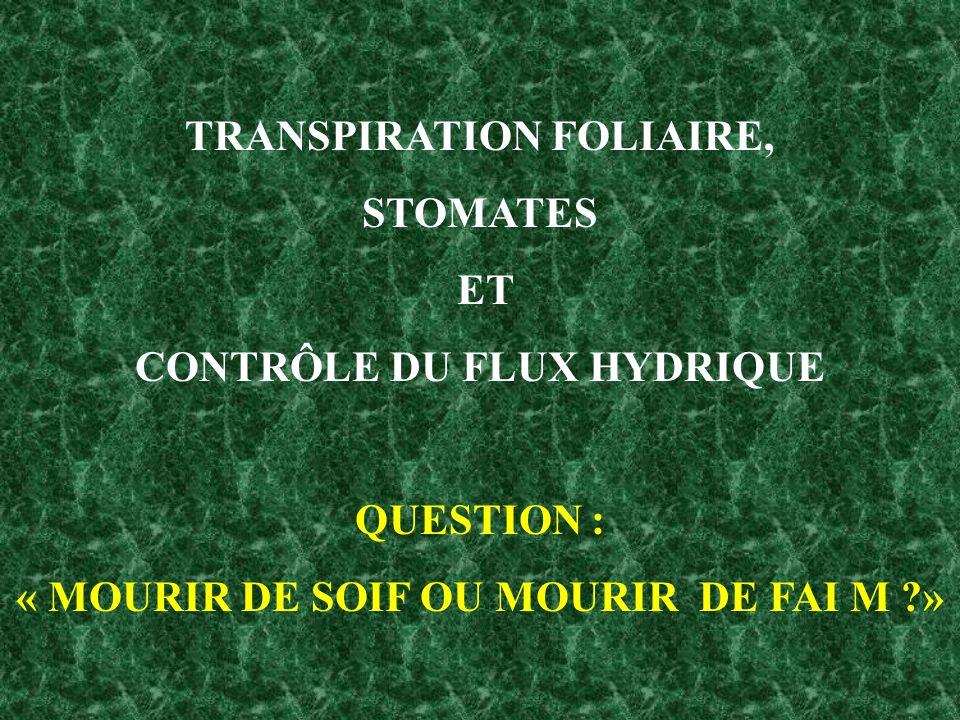 TRANSPIRATION FOLIAIRE, STOMATES ET CONTRÔLE DU FLUX HYDRIQUE QUESTION : « MOURIR DE SOIF OU MOURIR DE FAI M ?»