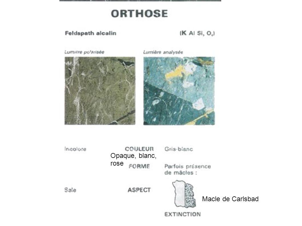 Un gros cristal d orthose avec macle de Carlsbad...et des plus petits de plagioclases