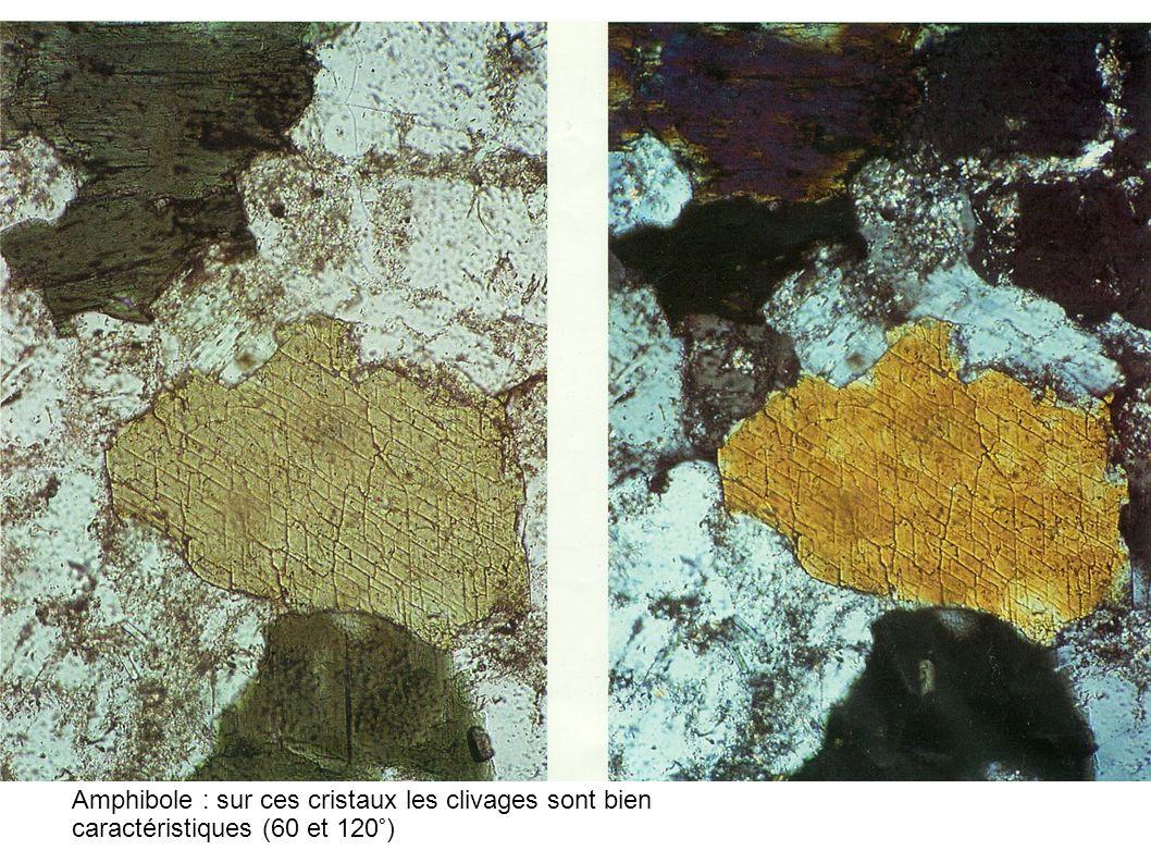 Amphibole : sur ces cristaux les clivages sont bien caractéristiques (60 et 120°)