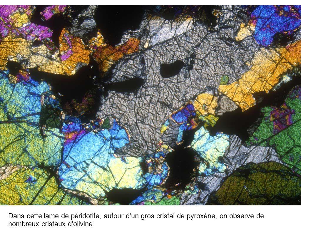 Dans cette lame de péridotite, autour d'un gros cristal de pyroxène, on observe de nombreux cristaux d'olivine.