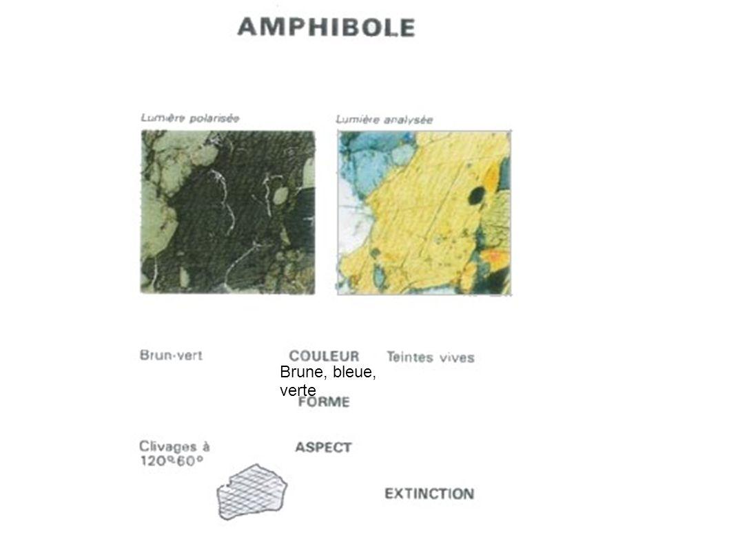 Olivine : un minérale très craquelé polarisant dans des teintes très vives.
