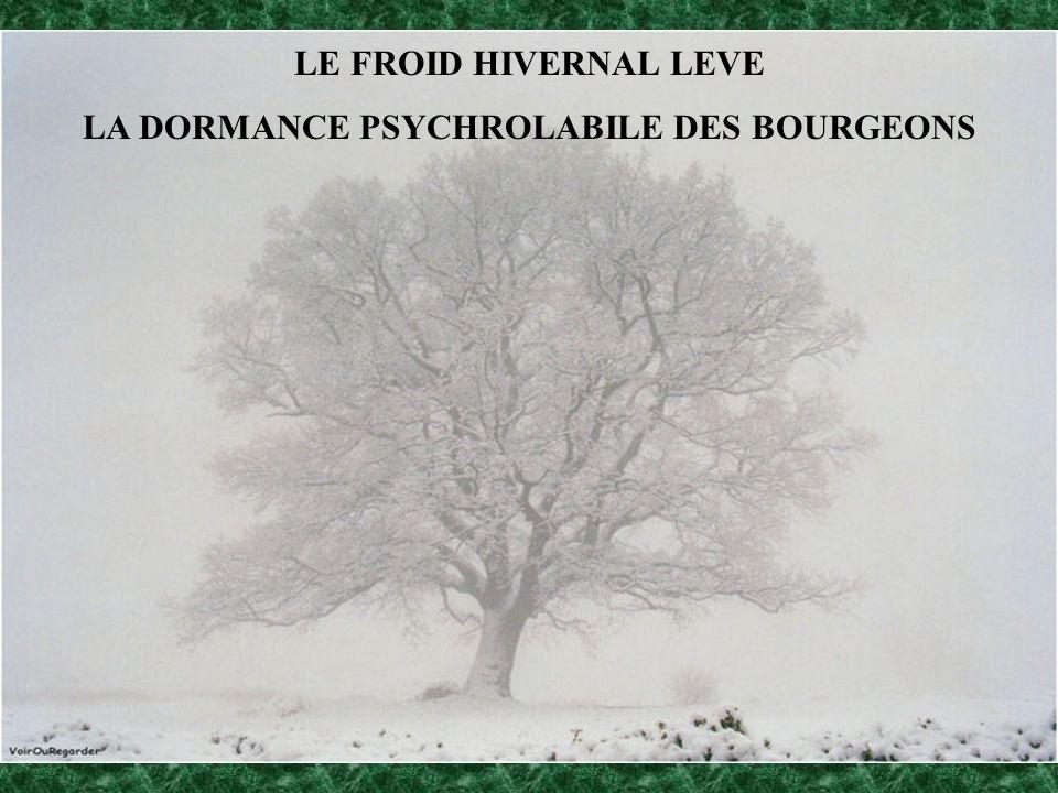 LE FROID HIVERNAL LEVE LA DORMANCE PSYCHROLABILE DES BOURGEONS