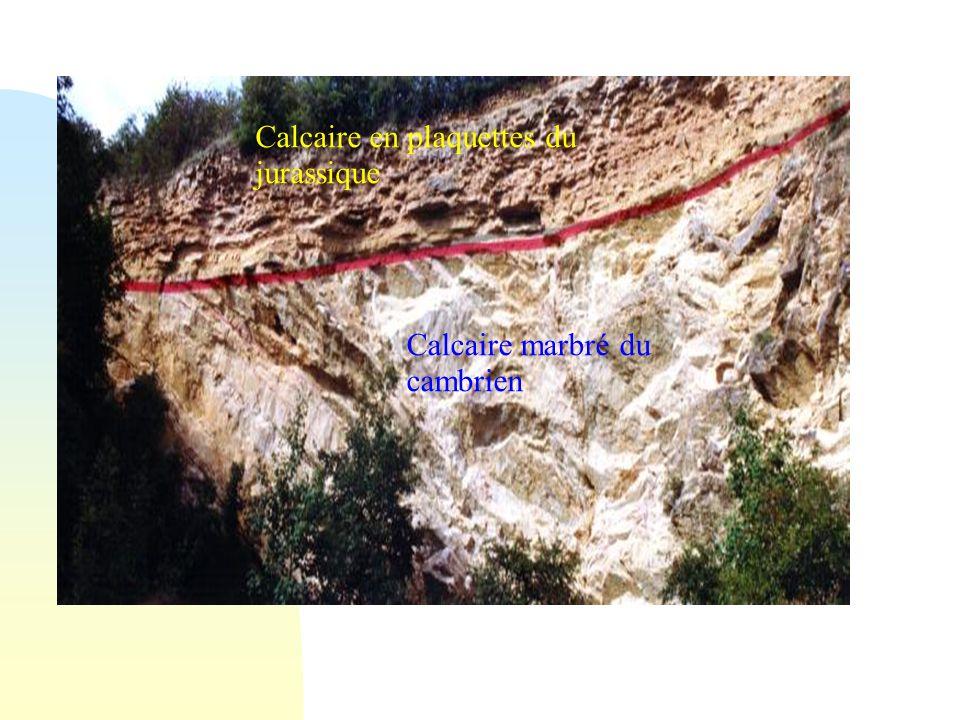 Calcaire marbré du cambrien Calcaire en plaquettes du jurassique