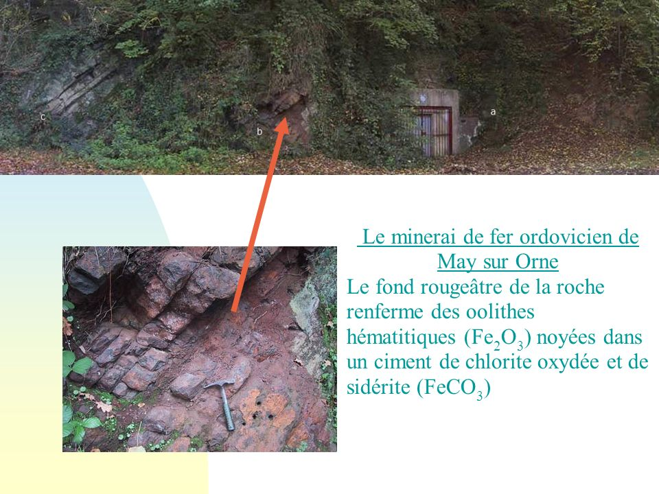 Le minerai de fer ordovicien de May sur Orne Le fond rougeâtre de la roche renferme des oolithes hématitiques (Fe 2 O 3 ) noyées dans un ciment de chlorite oxydée et de sidérite (FeCO 3 )