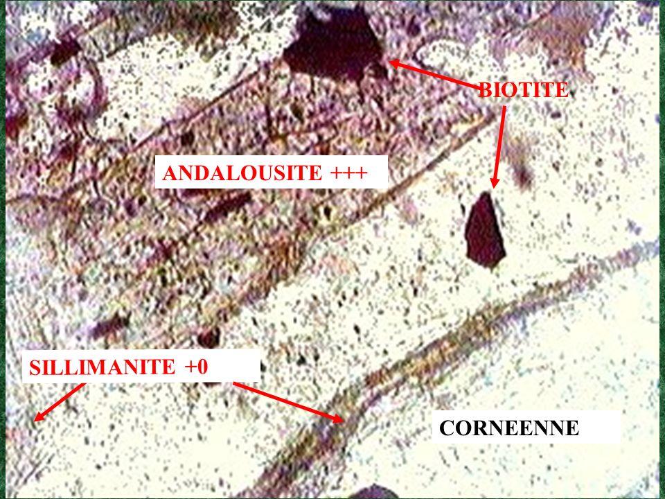 BIOTITE ANDALOUSITE +++ SILLIMANITE +0 CORNEENNE