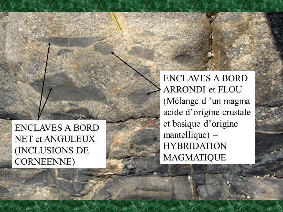 ENCLAVES A BORD NET et ANGULEUX (INCLUSIONS DE CORNEENNE) ENCLAVES A BORD ARRONDI et FLOU (Mélange d un magma acide dorigine crustale et basique dorig