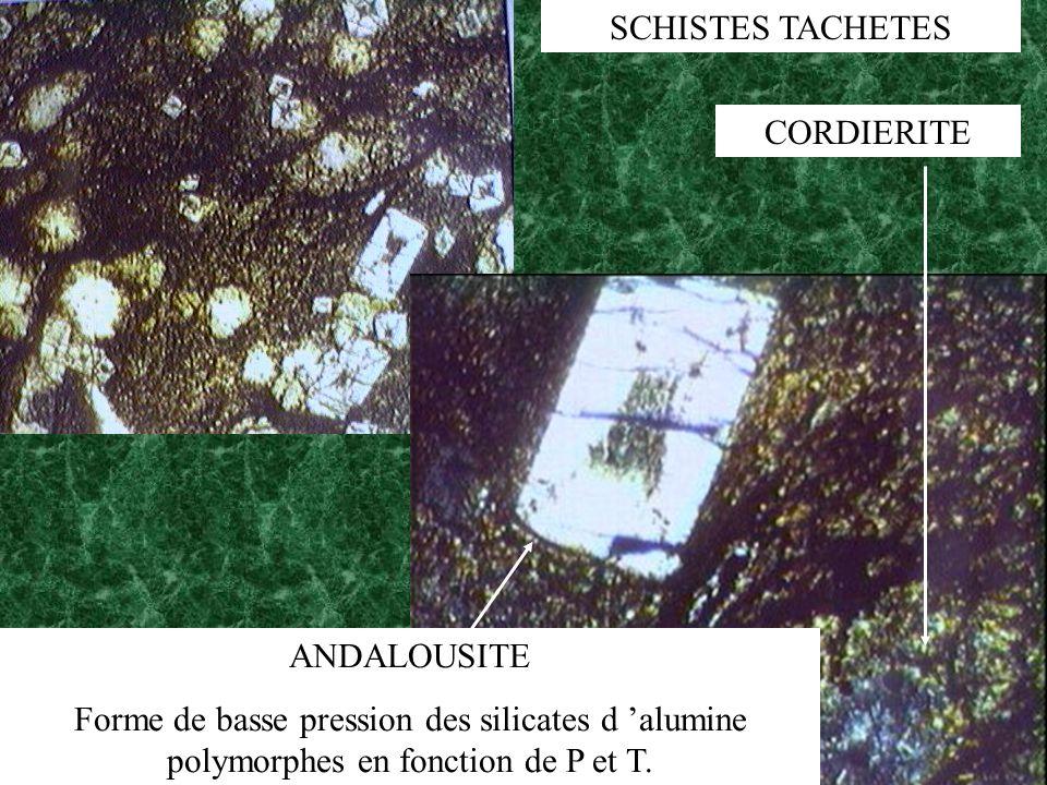 ANDALOUSITE Forme de basse pression des silicates d alumine polymorphes en fonction de P et T. CORDIERITE SCHISTES TACHETES
