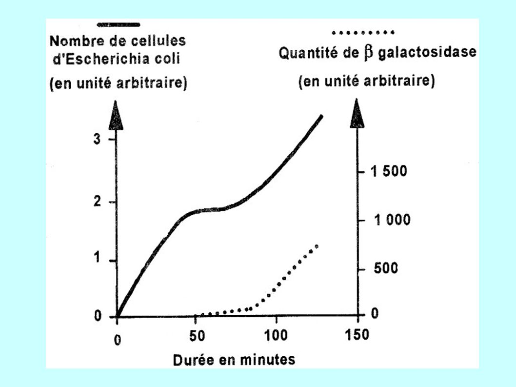 http://biologie.univ-mrs.fr/upload/p189/introvirologie.pdf