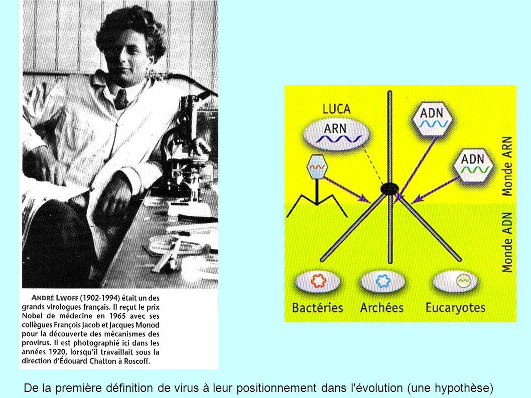 De la première définition de virus à leur positionnement dans l évolution (une hypothèse)
