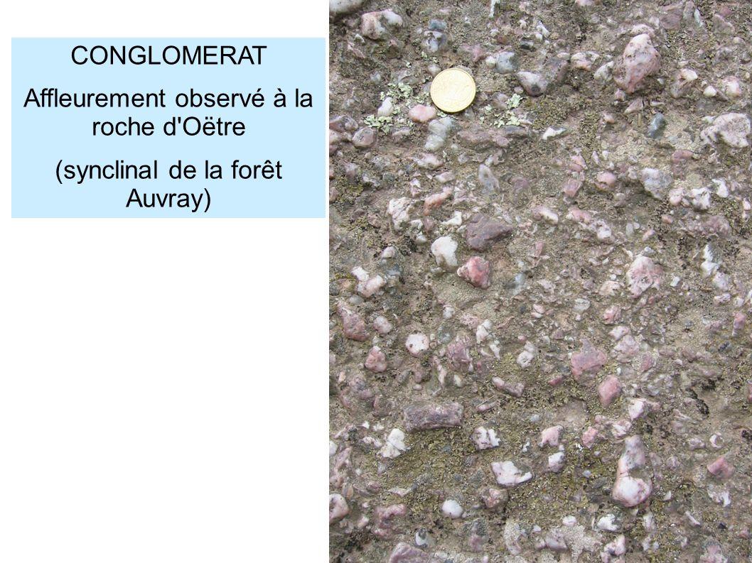 CONGLOMERAT Affleurement observé à la roche d'Oëtre (synclinal de la forêt Auvray)