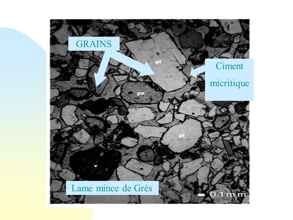 Ciment micritique Lame mince de Grès GRAINS
