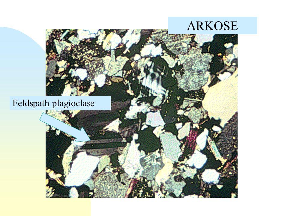 Grès arkosique à ciment calcaire (lame mince, LPA)
