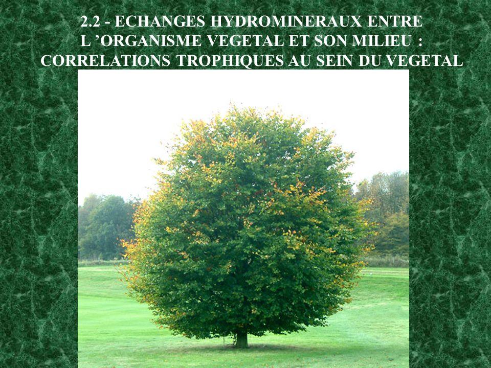 2.2 - ECHANGES HYDROMINERAUX ENTRE L ORGANISME VEGETAL ET SON MILIEU : CORRELATIONS TROPHIQUES AU SEIN DU VEGETAL