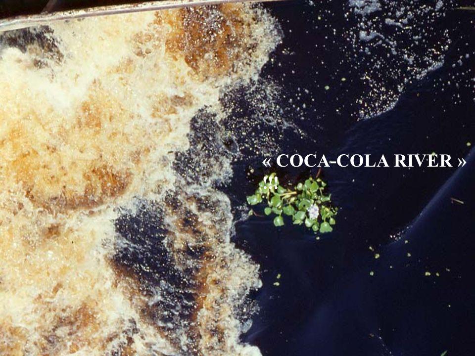 « COCA-COLA RIVER » !!!