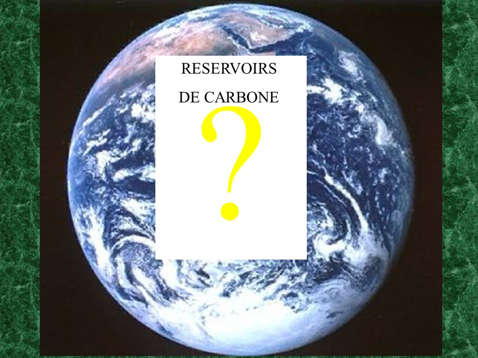 ? RESERVOIRS DE CARBONE