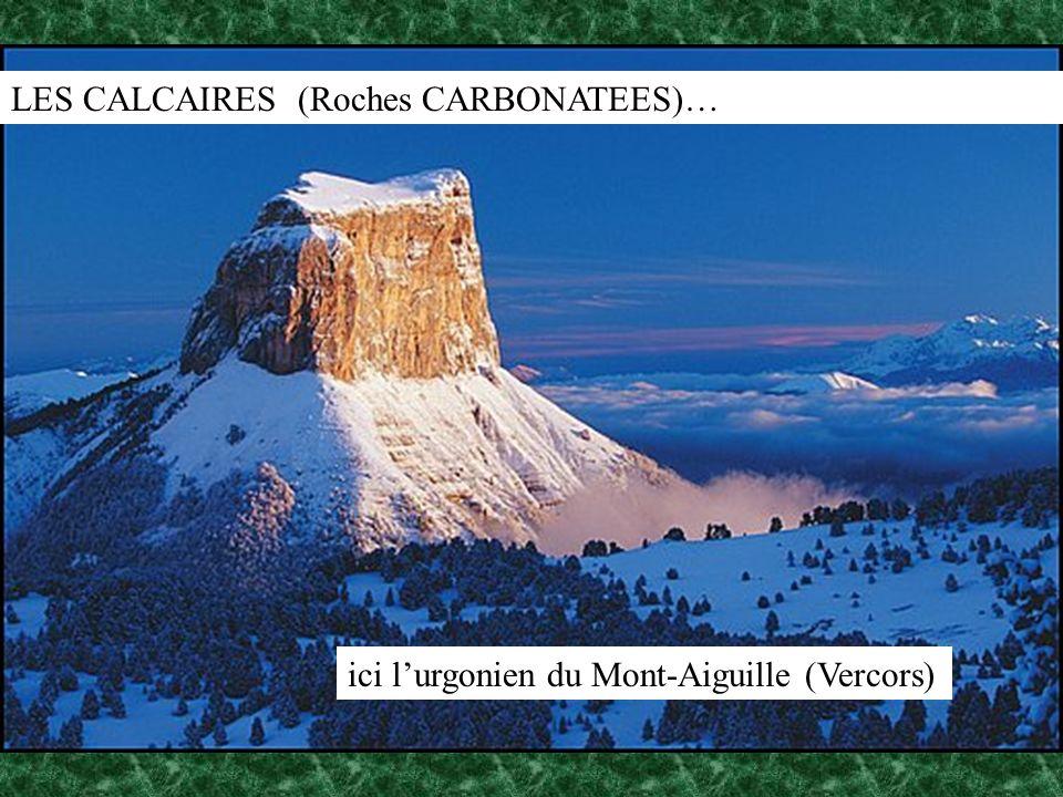 LES CALCAIRES (Roches CARBONATEES)… ici lurgonien du Mont-Aiguille (Vercors)