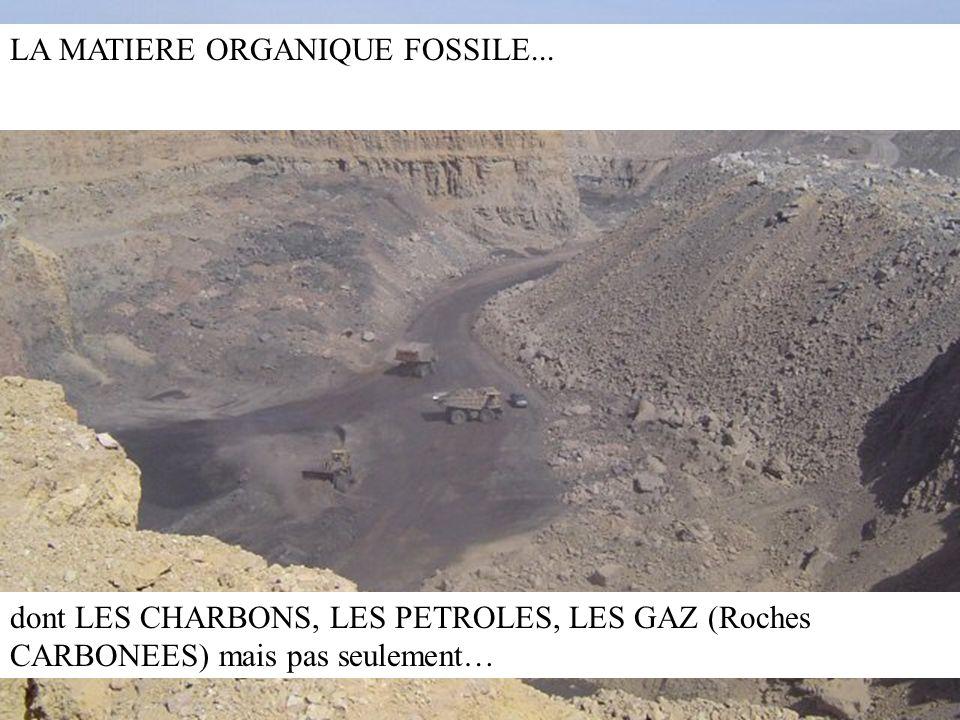 LA MATIERE ORGANIQUE FOSSILE... dont LES CHARBONS, LES PETROLES, LES GAZ (Roches CARBONEES) mais pas seulement…
