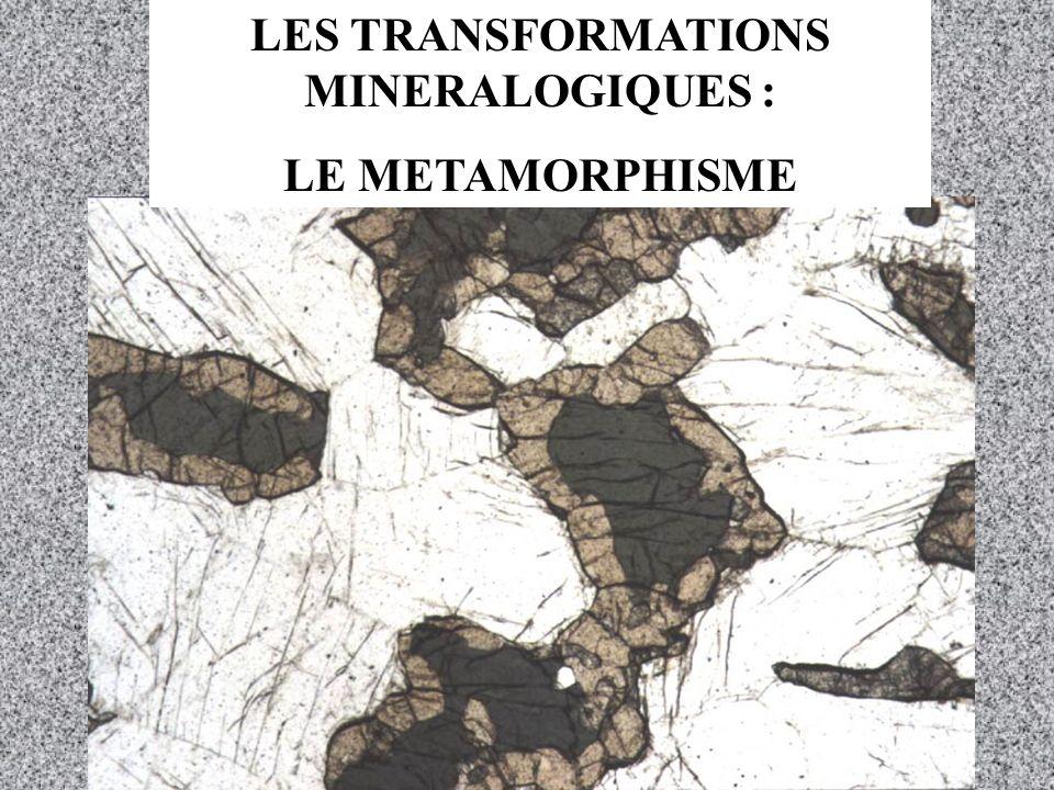 LES TRANSFORMATIONS MINERALOGIQUES : LE METAMORPHISME