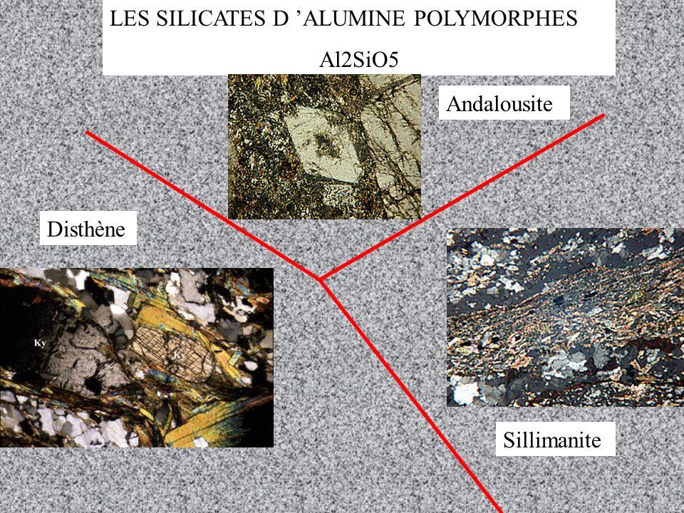 LES SILICATES D ALUMINE POLYMORPHES Al2SiO5 Andalousite Disthène Sillimanite
