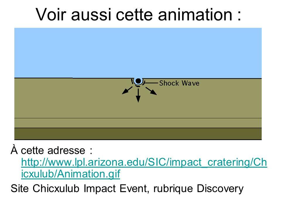 Voir aussi cette animation : À cette adresse : http://www.lpl.arizona.edu/SIC/impact_cratering/Ch icxulub/Animation.gif http://www.lpl.arizona.edu/SIC