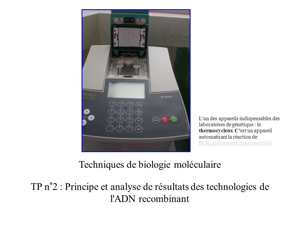 Techniques de biologie moléculaire TP n°2 : Principe et analyse de résultats des technologies de l'ADN recombinant L'un des appareils indispensables d