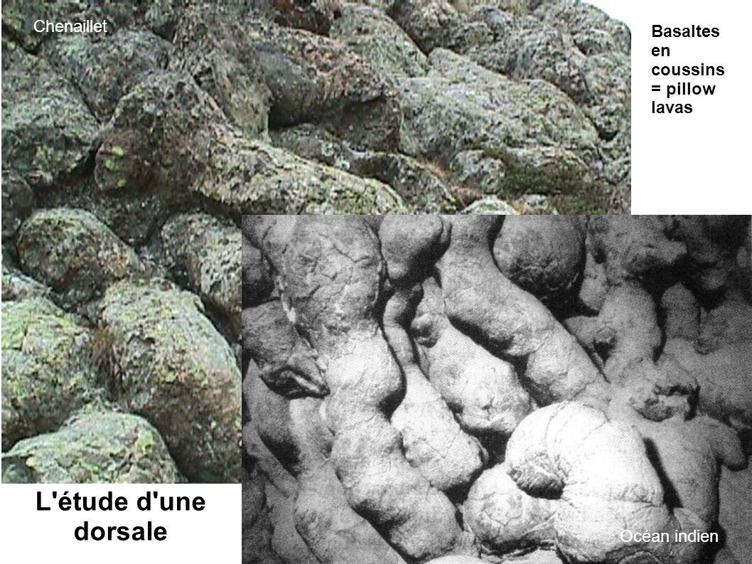 L'étude d'une dorsale Basaltes en coussins = pillow lavas Chenaillet Océan indien