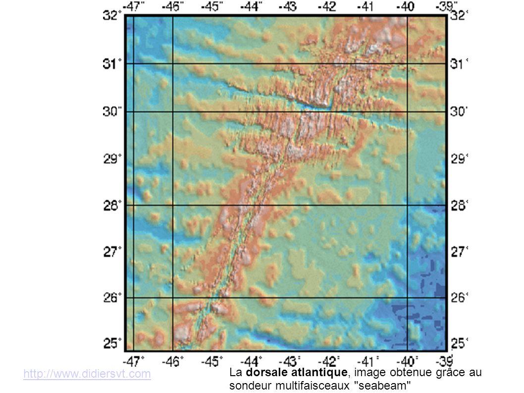 http://www.didiersvt.com La dorsale atlantique, image obtenue grâce au sondeur multifaisceaux
