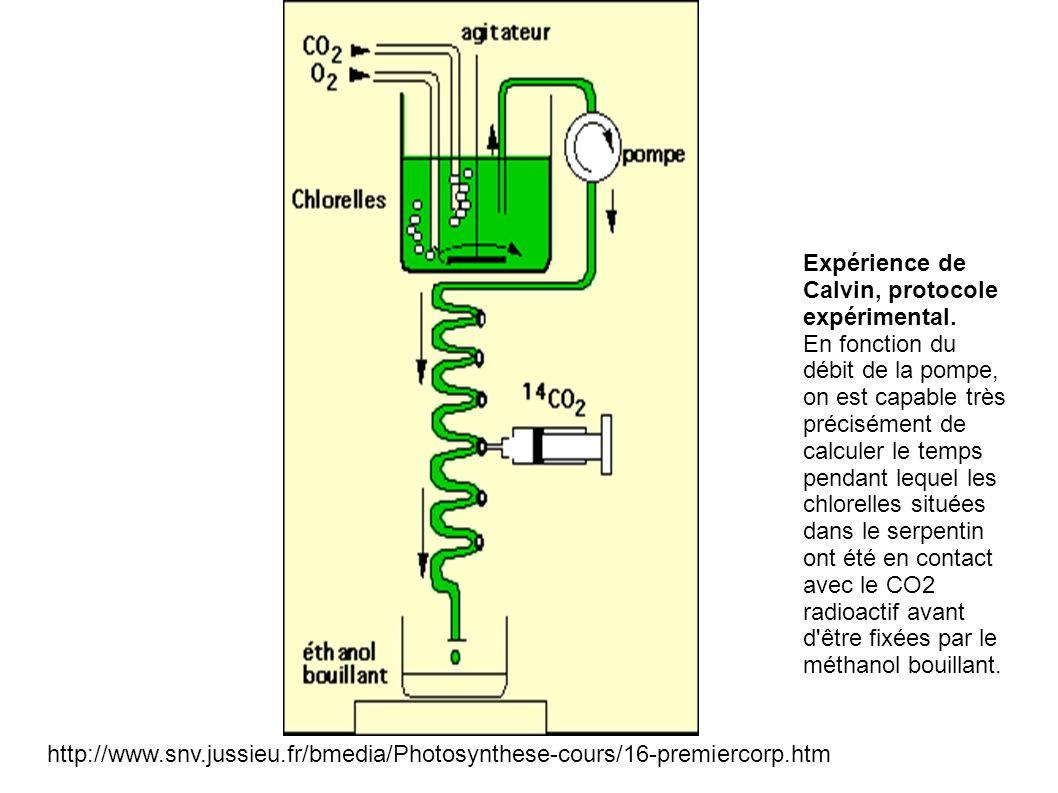 Expérience de Calvin, protocole expérimental. En fonction du débit de la pompe, on est capable très précisément de calculer le temps pendant lequel le