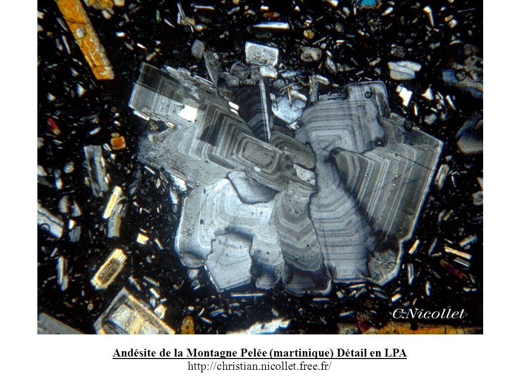 Andésite de la Montagne Pelée (martinique) Détail en LPA http://christian.nicollet.free.fr/