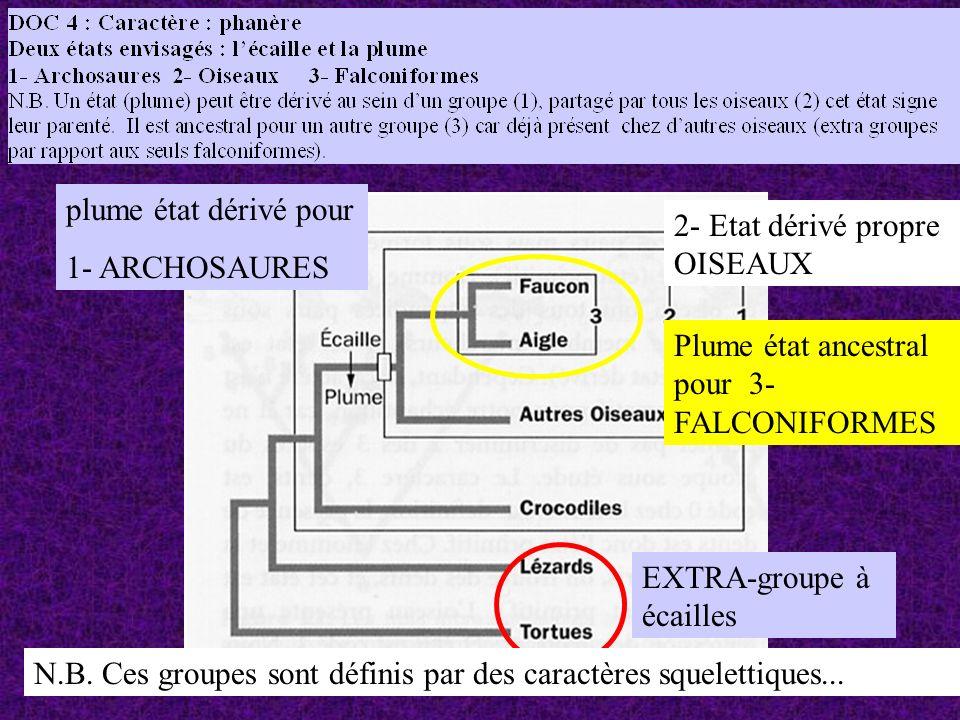 EXTRA-groupe à écailles plume état dérivé pour 1- ARCHOSAURES 2- Etat dérivé propre OISEAUX Plume état ancestral pour 3- FALCONIFORMES N.B.