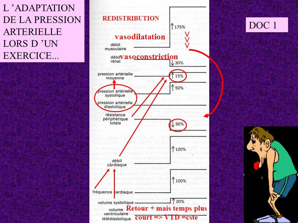 L ADAPTATION DE LA PRESSION ARTERIELLE LORS D UN EXERCICE... >>> vasodilatation vasoconstriction REDISTRIBUTION Retour + mais temps plus court => VTD