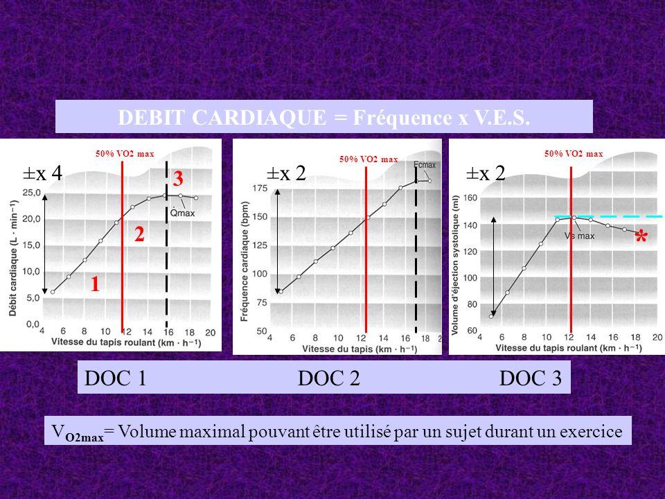 DEBIT CARDIAQUE = Fréquence x V.E.S. DOC 1 DOC 2 DOC 3 V O2max = Volume maximal pouvant être utilisé par un sujet durant un exercice 50% VO2 max * 1 2