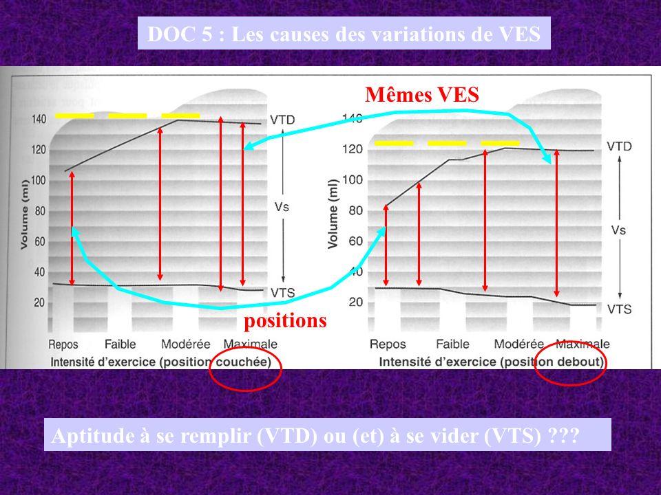 DOC 5 : Les causes des variations de VES Aptitude à se remplir (VTD) ou (et) à se vider (VTS) ??? positions Mêmes VES