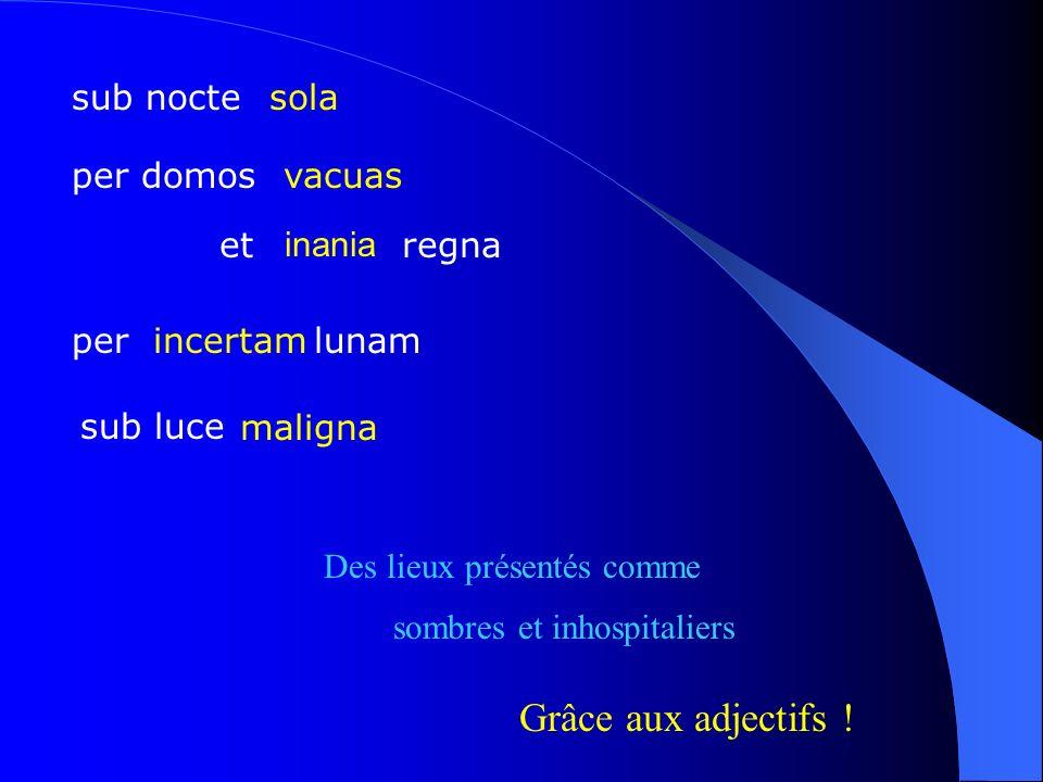 sub nocte per domos per lunam sub luce Des lieux présentés comme sombres et inhospitaliers maligna Grâce aux adjectifs ! incertam et regna vacuas sola