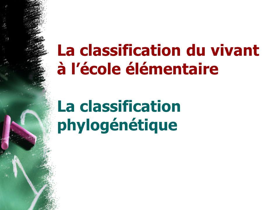 La classification du vivant à lécole élémentaire La classification phylogénétique