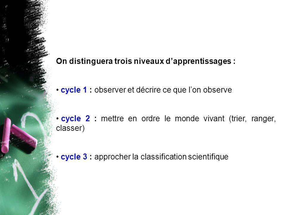 On distinguera trois niveaux dapprentissages : cycle 1 : observer et décrire ce que lon observe cycle 2 : mettre en ordre le monde vivant (trier, rang
