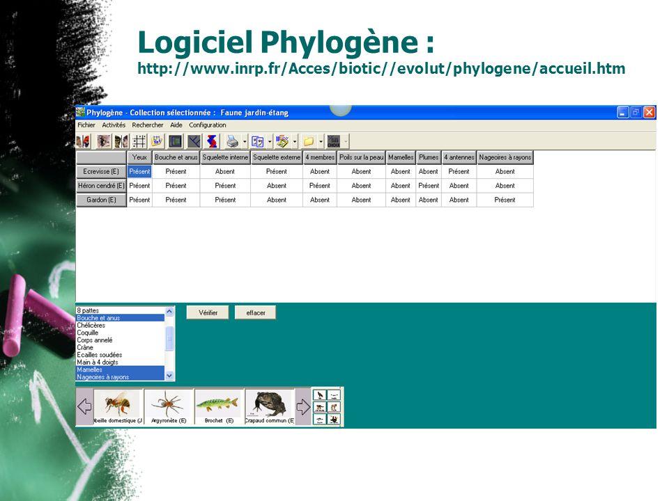 Logiciel Phylogène : http://www.inrp.fr/Acces/biotic//evolut/phylogene/accueil.htm