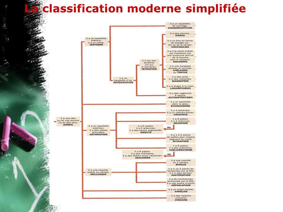 La classification moderne simplifiée