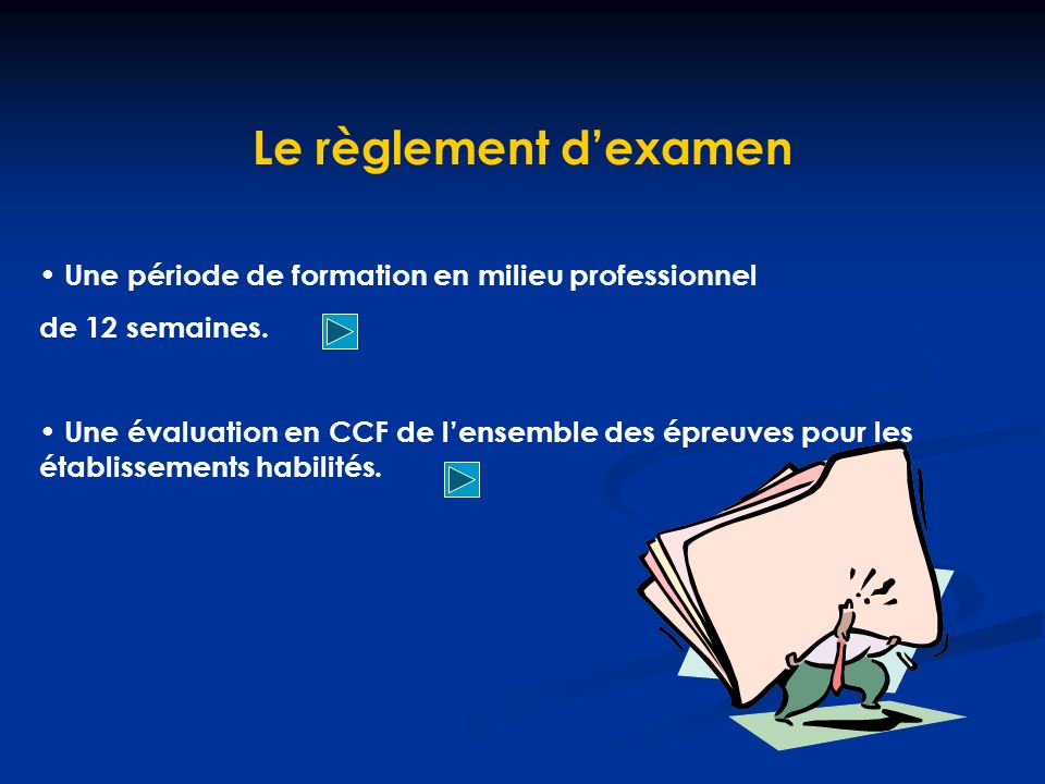 Le règlement dexamen Une période de formation en milieu professionnel de 12 semaines.